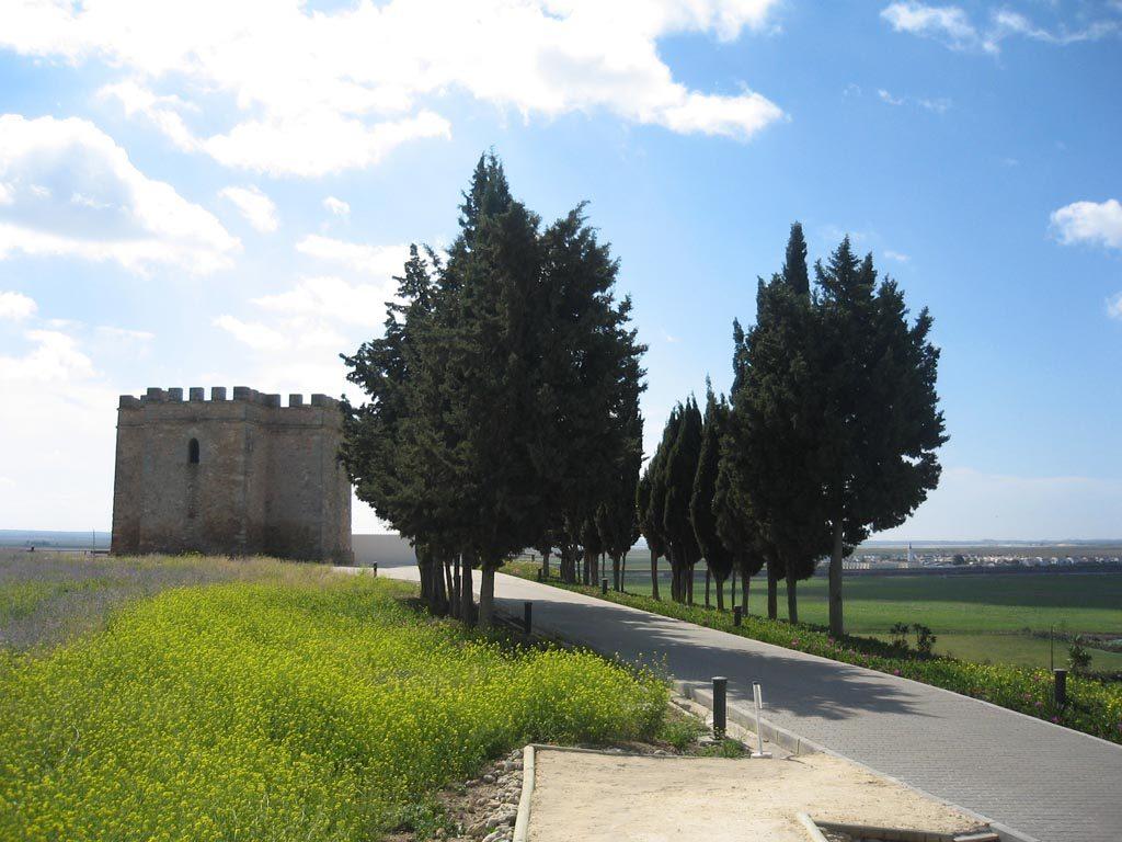 EnclavEnclave Arqueológico Castillo de Doña Blanca - Fotografía: Antonio M. Romero Doradoe Arqueológico Castillo de Doña Blanca
